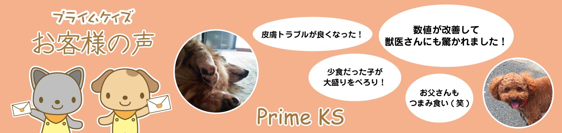【PrimeKS/さかい企画】お客様の声