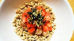 犬猫のドライフード、ハッピーラブを使ったレシピ「カツオとトマトのさっぱりごはん」