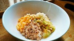 犬猫のレトルト肉・乾燥肉を使ったレシピ「ビビンバ風」