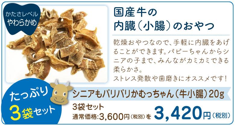 シニアもバリバリかむっちゃん(牛小腸)20g ×3袋セット