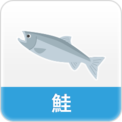 鮭の商品一覧へ