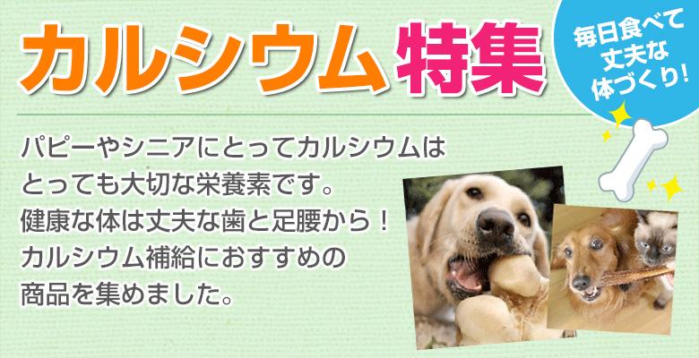 犬猫のカルシウム補給におすすめの生肉特集