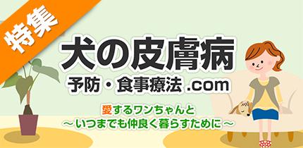 犬猫の症状・病気別食材ナビ【犬の皮膚病】