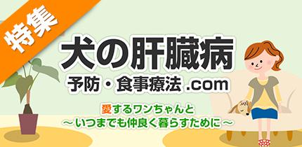 犬猫の症状・病気別食材ナビ【犬の肝臓病】