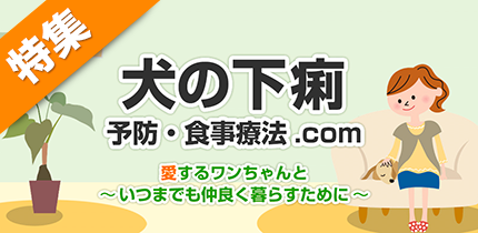 犬猫の症状・病気別食材ナビ【犬の下痢】