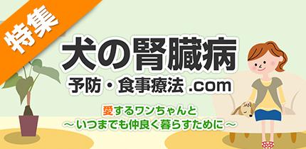 犬猫の症状・病気別食材ナビ【犬の腎臓病】