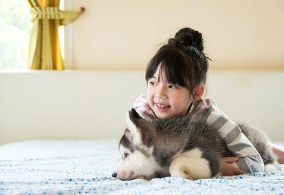 犬の家庭でできる「安静療法」と「食事療法」