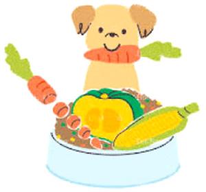 愛犬の状態に合わせた食事を作る事ができる。