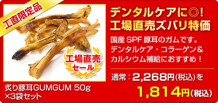 ≪工場直売セール≫ 炙り豚耳GUMGUM 50g(×3袋セット)