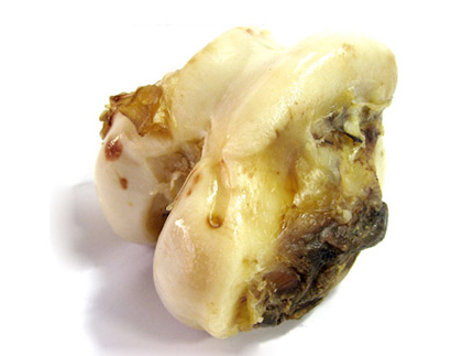 犬のデンタルケア・口臭予防におすすめの牛骨「特選牛の骨 よかボーン」